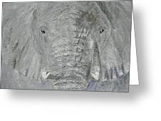 Small Tusks Greeting Card