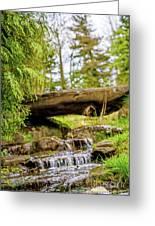Small Waterfall 2 Greeting Card