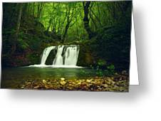 Small Waterfall In Forest Greeting Card