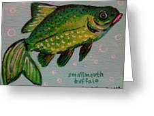 Smallmouth Buffalo Greeting Card