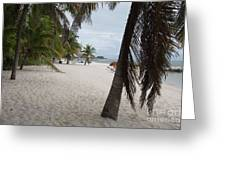 Smathers Beach - Key West Greeting Card