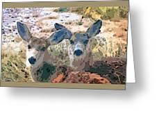 Smidgeon And Rudi 2 Greeting Card