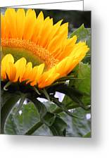 Smiling Flower Greeting Card