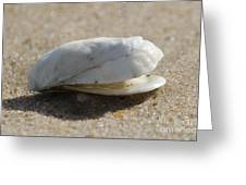 Smiling Shell Greeting Card