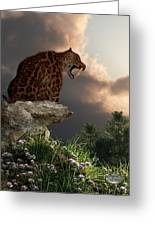 Smilodon Californicus Lookout Greeting Card