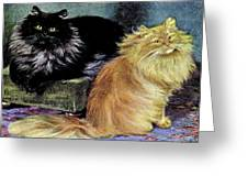 Smoke And Orange Persians Greeting Card