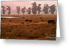 Smoke Over Lamar Valley Greeting Card