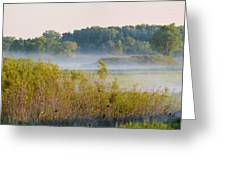 Smokey Marshland Greeting Card