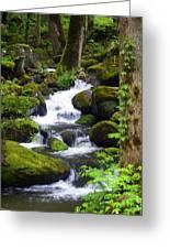 Smokey Mountain Stream Greeting Card