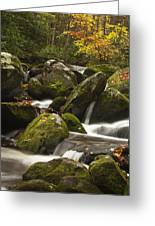 Smokies Waterfall Greeting Card