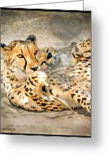 Smokin Cheetah Love Greeting Card