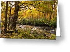 Smoky Autumn Greeting Card
