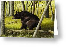 Smoky Mountain Bear Greeting Card