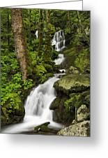 Smoky Mountain Cascade - D002388 Greeting Card