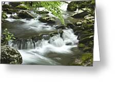 Smoky Mountain Rapids Greeting Card by Andrew Soundarajan
