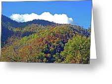 Smoky Mountain Scenery 6 Greeting Card