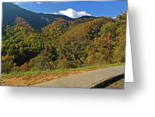 Smoky Mountain Scenery 8 Greeting Card