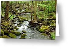 Smoky Mountain Stream 1 Greeting Card