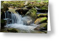 Flowing Stream #3, Smoky Mountains, Tennessee Greeting Card