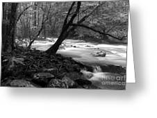 Smoky Mountain Stream Greeting Card