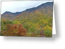 Smoky Mountains National Park 4 Greeting Card