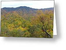 Smoky Mountains National Park 5 Greeting Card