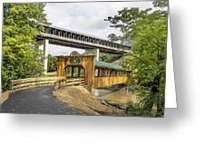 Smolen-gulf Bridge And Riverview Walk Bridge Greeting Card