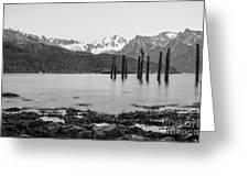 Smooth Seward Alaska Grayscale Greeting Card