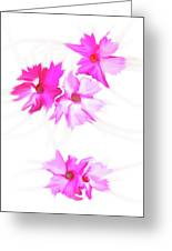 Smudged Floating Pink Flowers Greeting Card