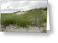 Smugglers Beach Dune South Yarmouth Cape Cod Massachusetts Greeting Card by Michelle Wiarda