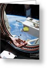 Snacking In Space Greeting Card