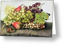 Snail With Grapes And Pears Greeting Card by Giovanna Garzoni