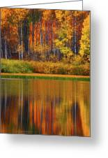 Snake River Fall Colors Greeting Card