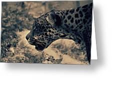 Snarl 2 Greeting Card