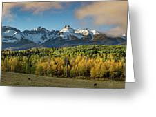 Sneffls Range Panorama From County Road 5  Greeting Card