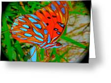 Snooty Butterfly Greeting Card