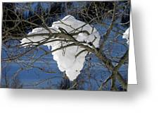 Snow And Africa Greeting Card