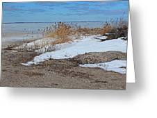 Snow And Sand Greeting Card