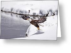 Snow Ballet Greeting Card
