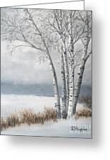Snow Coming Into The South Shore  Greeting Card