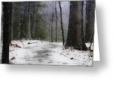 Snow Covered Path Quantico National Cemetery Greeting Card