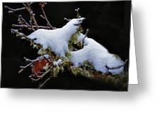 Snow Creatures Greeting Card