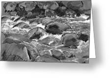 Snow Creek In Spring Greeting Card