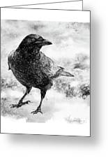 To Know A Crow Greeting Card