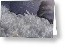 Snow Crystals Greeting Card