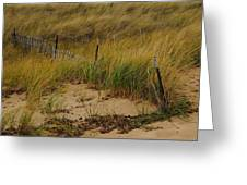 Snow Fence In Sand Greeting Card