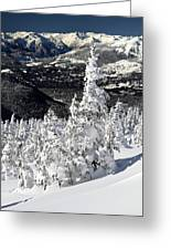 Snow Ghosts On Whistler Mountain Greeting Card