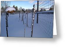 Snow In Bend Oregon  Greeting Card