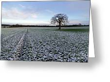 Snow In Surrey Countryside Greeting Card