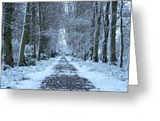 Snow In The Avenue Greeting Card